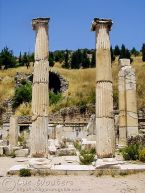 Ionian style columns
